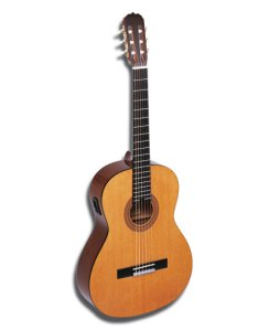 guitare.jpg?w=244&h=300